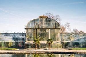 greenhouse-1209378_640