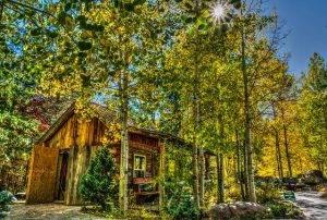 log-cabin-1732980_640